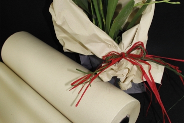 Graspapier-Rolle, versch. Farben